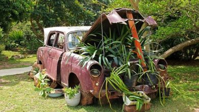 Photo of Creative Ways to Repurpose a Junk Car